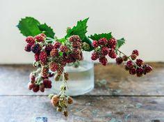 L'Abeille Fleuriste: Branch of Blackberries