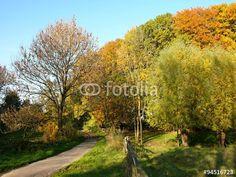 Weide mit Holzgatter für das Vieh am alten Gut Barkhausen im Teutoburger Wald bei Bielefeld