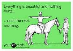everything is beautiful and nothing hurts... until the next morning (horse meme)