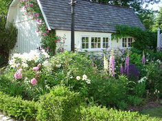 Foxgloves, Peonies and Phlox in this lovely cottage style garden | Andrew Henwood