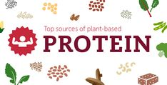 The Best Sources of Vegan Protein – A Go-To Guide