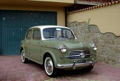 Fiat 1100 (1953-1969)