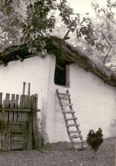 Tyúkól a disznóól padlásán. Szank, 1965. Vintage Pictures, Old Pictures, Old Photos, Central Europe, Old Buildings, Historical Photos, Ancestry, Hungary, Decoupage