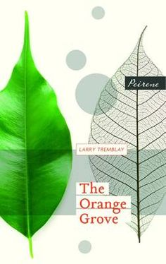 The Orange Grove - East and West: Looking Both Ways 2 (Paperback)