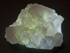 Fluorite (backlit) - Gila River Prospect, Grant County, New Mexico Crystals Minerals, Rocks And Minerals, Minerals For Sale, Fossils, New Mexico, Geology, Auction, Display, Jewels