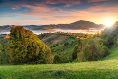 Autumn landscape with misty valley by Alpine Dreams on Golf Photography, Landscape Photography, Peles Castle, Transylvania Romania, Alice, Forest Road, Autumn Nature, Picture Credit, Cover Pics