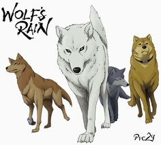 Day Wolfs Rain Was The First Anime I Ever Watched Would Say Kikis Delivery Service But Didnt Really Comprehend It At 4 Years Old And Probably