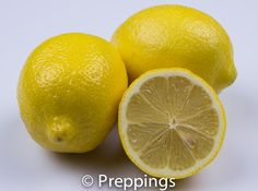 Lemon :: Search by flavors, find similar varieties and discover new uses for ingredients @ preppings.com