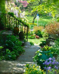 View of Carolyn's Shade Gardens in Bryn Mawr, PA