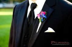 hot pink spray roses and royal blue delphinium boutonniere