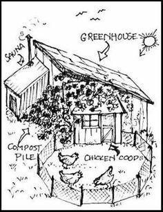 is Permaculture? is Permaculture?is Permaculture? Greenhouse Plans, Greenhouse Gardening, Texas Gardening, Backyard Farming, Chickens Backyard, Backyard Aquaponics, Farm Gardens, Outdoor Gardens, Plan Potager