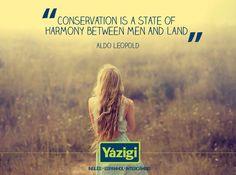 #yazigi