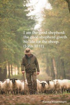 Shepherd and sheep Lord Is My Shepherd, The Good Shepherd, Sheep Art, Sheep Wool, Farm Animals, Cute Animals, Sheep And Lamb, Counting Sheep, Schaefer