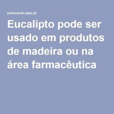 Eucalipto pode ser usado em produtos de madeira ou na área farmacêutica