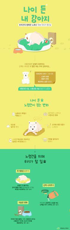 20151103-dog-