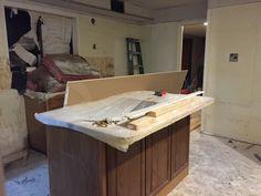 Kitchen, week 1 mid-renovation- March 2015