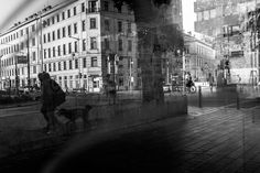 Oh Vienna . 2015 . 162 . Walk the dog . Nicole Andermatt #Vienna #Wien #streetphotography #dog