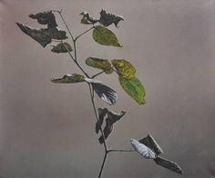 Hyperreal oil paintings by christoph eberle Hyperrealistic Art, Oil On Canvas, Plant Leaves, Moose Art, Plants, Painting, Animals, Hui, Blackberry