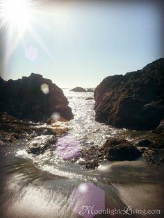 My favorite beach to visit Harris Beach Brookings Or...my first summer in Oregon.