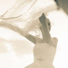 Wedding One Shoulder Wedding Dress, Wedding Dresses, Fashion, Bride Dresses, Moda, Bridal Gowns, Alon Livne Wedding Dresses, Fashion Styles, Wedding Gowns