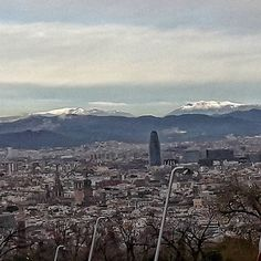 Neu Winter is kind of back so we had some snow at the Mountains. Not in Barcelona You can see the and the . Winter Is Here, Barcelona, Snow, Cat, Mountains, Travel, Life, Viajes, Cat Breeds