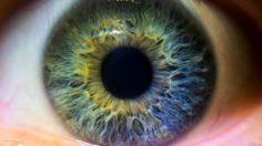 #Los tratamientos de prevención primordiales para no perder la visión - Infobae.com: Infobae.com Los tratamientos de prevención…