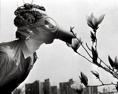 On the first Earth Day - April 2013 - a college student in New York City sniffs a magnolia blossom through a gas mask. Earth Day History, First Earth Day, Photocollage, Monochrom, Jolie Photo, Climate Change, Dieselpunk, Vintage Photos, Portraits