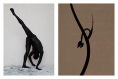 Diptych series Flora & Faunus by Torkil Gudnason