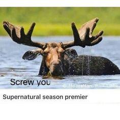 #Supernatural S12 Premier 😂 #spn #spnfamily
