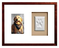 A picture of your dog and a plaster paw print impression framed in a double opening mat