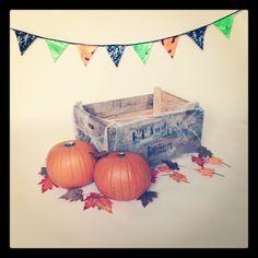 Halloween Setup 2012