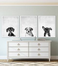 Three Puppy Dog Prints Animal Nursery Art Grey Nursery Decor