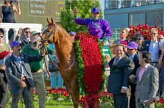 California Chrome Wins Secretariat 'Vox Populi' Award | Paulick Report – Thoroughbred Horse Racing News