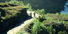 Rallarvegen- the most famous bike trail in Norway Bike Trails, Mtb, Norway, Things To Do, Cycling, Scenery, To Go, River, History