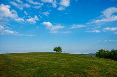 'Lone Tree - Einsamer Baum' von Bernd  Kasper bei artflakes.com als Poster oder Kunstdruck $17.33
