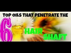 6 TOP NATURAL OILS THAT PENETRATE THE HAIR SHAFT - YouTube