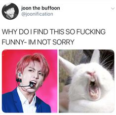 Jungkook is a mafia boss and you too. Jungkook wants your mafia . - Jungkook is a mafia boss and you too. Jungkook wants your mafia … # Fan-Fiction # amr - Jung Kook, K Pop, Bts Funny Videos, Bts Memes Hilarious, Kookie Bts, Bts Bangtan Boy, Jimin, Got7 Bambam, Wattpad