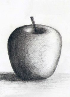62 charcoal fruits ideas d pencil drawings, drawings ve art Shading Drawing, Pencil Sketch Drawing, Nature Drawing, Pencil Art Drawings, Nose Drawing, Cool Art Drawings, Realistic Drawings, Art Drawings Sketches, Easy Drawings