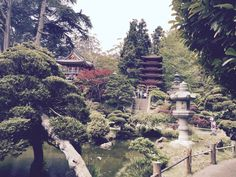 jardim japones com casa de chás