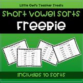 Browse over 80 educational resources created by Little Owl's Teacher Treats in the official Teachers Pay Teachers store. Short Vowel Games, Short Vowels, Reading Centers, Literacy Centers, Teacher Treats, Teacher Stuff, Phonics Programs, Word Sorts, Letter Activities