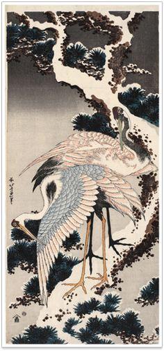 Katsushika Hokusai (Japanese Ukiyo-e Printmaker, ca. 1760 - / Cranes on a Snow-coverd Pine Tree (Yuki-matsu ni Tsuru) Japanese Artwork, Japanese Painting, Japanese Prints, Chinese Painting, Japanese Textiles, Arte Latina, Japanese Animals, Japanese Nature, Japanese Crane