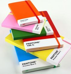 This is just adore!!! Pantone notebooks! What graphic designer wouldn't enjoy one of these?