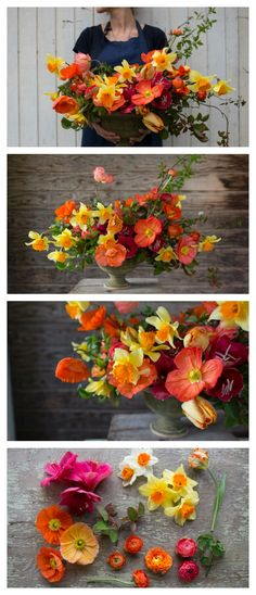 Bright, cheery citrus hues of the March 20, 2015 Seasonal Flower Alliance bouquet include: amaryllis, rose foliage, icelandic poppies, ranunculus, viburnum foliage, parrot tulips and narcissus. Everything but the amaryllis was grown at Floret Flower Farm.