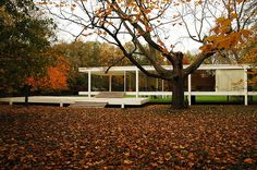 Clásicos de Arquitectura: Casa Farnsworth / Mies van der Rohe (8) Usuario de Flickr: Greg Robbins