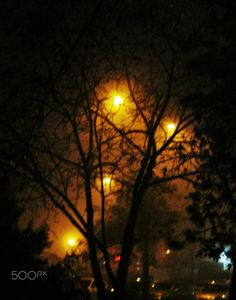 foggy night - null Celestial, Sunset, Night, Photos, Outdoor, Outdoors, Pictures, Sunsets, Outdoor Games