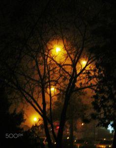 foggy night - null