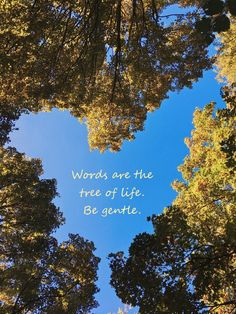 Words are the tree of life.  Be gentle.