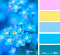 Tell me not flowers, blue color palette, blue and pink, yellow Color Schemes Colour Palettes, Blue Colour Palette, Color Combos, Color Balance, Color Harmony, Color Blending, Color Mixing, Deco Design, Color Swatches