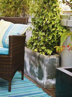 En hög och smal kruka är ytsnål och därför ett bra val för den lilla balkongen.