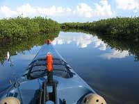 TPWD: Lighthouse Lakes Paddling Trail | | Texas Paddling Trails